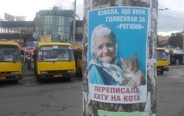 І знову кіт. Тепер у Києві. ФОТО.