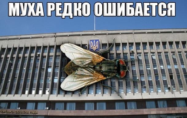 Губернатор Запорожской области не хочет, чтобы водители «моргали» фарами