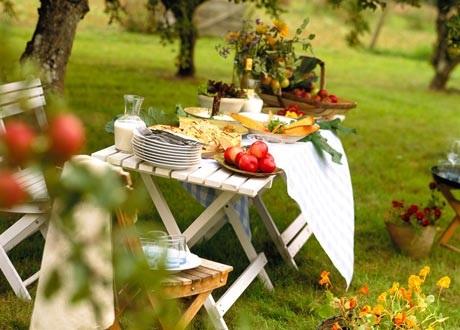 Летний пикник: где купить все, что нужно, и при этом сэкономить