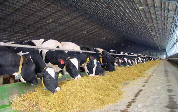 80% владельцев ферм не контролируют производство