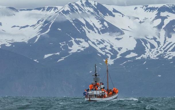 США пересмотрят сотрудничество с Исландией из-за охоты на китов