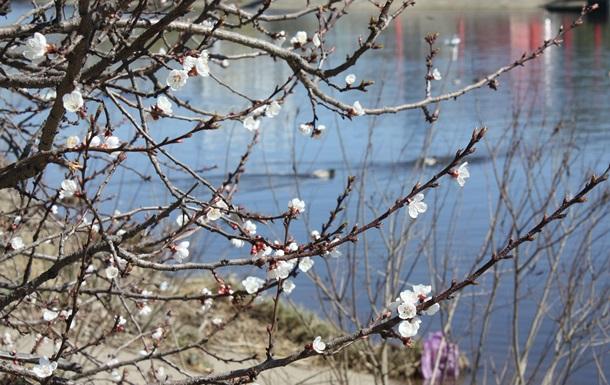 Погода в Украине: синоптики обещают настоящую весну