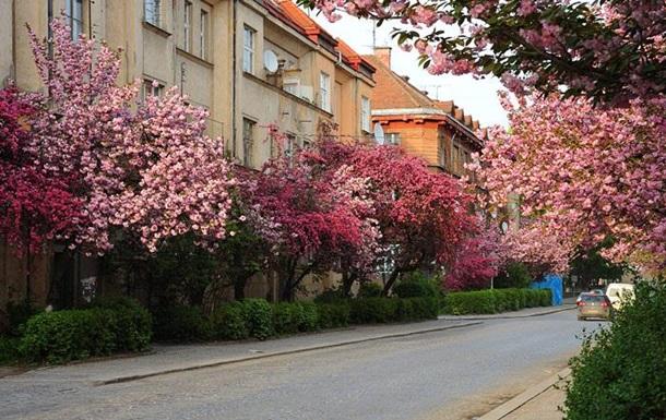 Куда поехать на майские праздники?