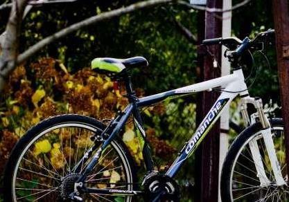 Экологию сбережет велосипед