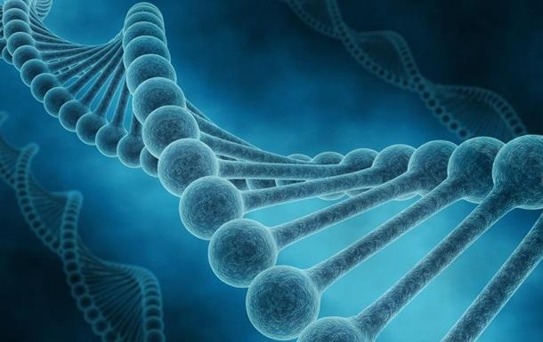 Ученые обнаружили новый  ген долголетия
