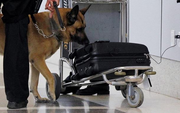 В аэропорту Сиднея месяц простоял чемодан со взрывчаткой, забытый полицейскими