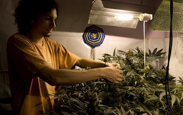 В Уругвае начинают работу клубы по выращиванию марихуаны