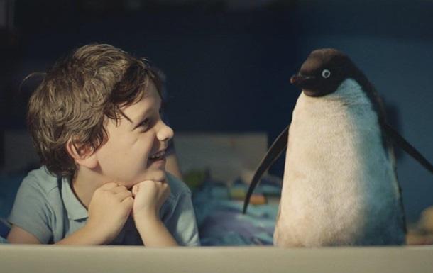 Клип о мальчике и пингвине взорвал интернет