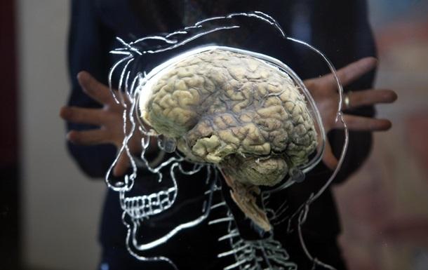 Вимикач свідомості і новий шар ока: нещодавно відкриті факти про людину