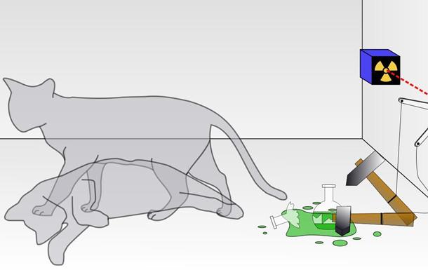 Кіт живий і мертвий.Фізики повідомили про об єктивну реальність псі-функції