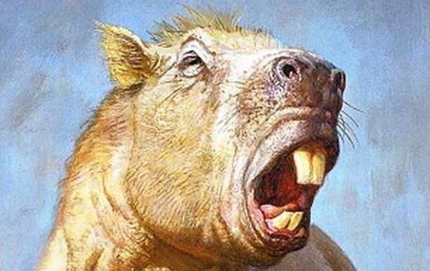 Вчені оцінили силу зубів найбільшого гризуна в історії Землі