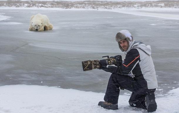 Итальянский фотограф опубликовал фотосессию с полярным медведем