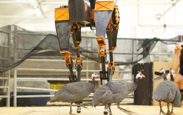 Создан самый быстрый в мире двуногий робот