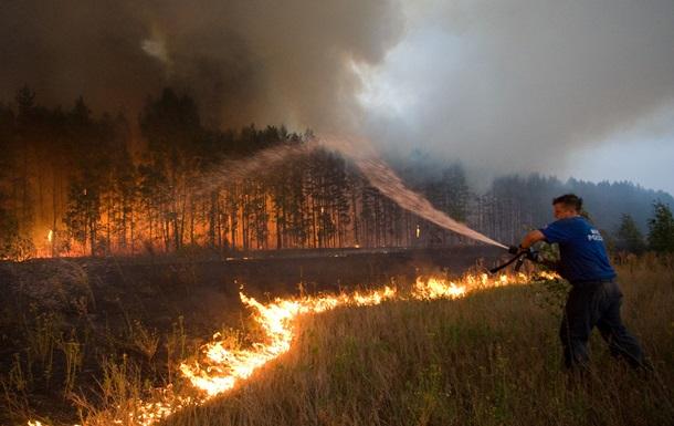 Россия занимает первое место в мире по потерям лесов – исследование