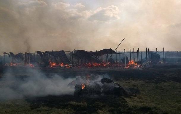 Милиция занялась пожаром в приюте для животных в Киевской области