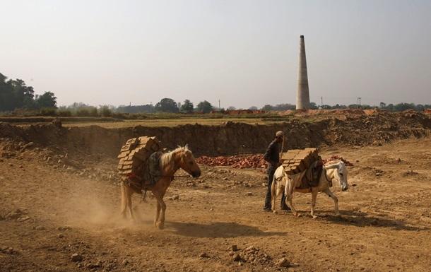 В Афганистане  арестовали  мулов, перевозивших взрывчатку для теракта