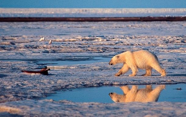 Ученые: К 2040 году Арктика может летом освобождаться от льдов
