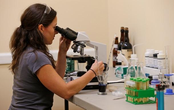 Ученые нашли способ делать морфий из дрожжей