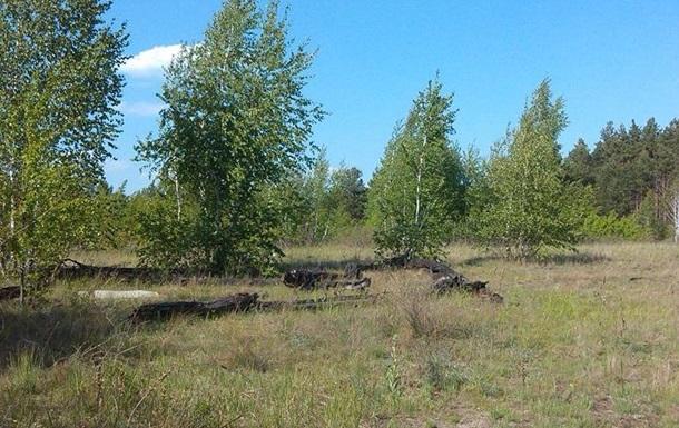 Дерибан Быковнянского леса узаконят?