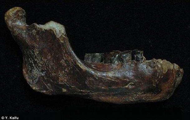 Ученые нашли еще одного возможного предка человека