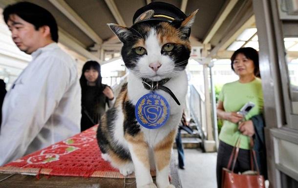 Умерла кошка-начальник вокзала в Японии