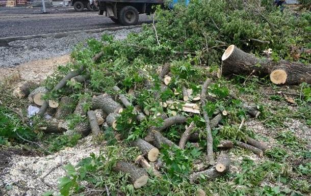 На Волыни ураган повалил 50 деревьев и травмировал семь человек