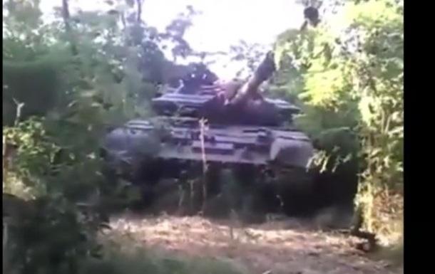 У мережі з явилося відео з бійцями на танку в заростях конопель