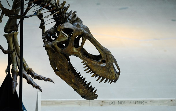 Останки динозавров в Испании изменили взгляды ученых на древнюю экосистему