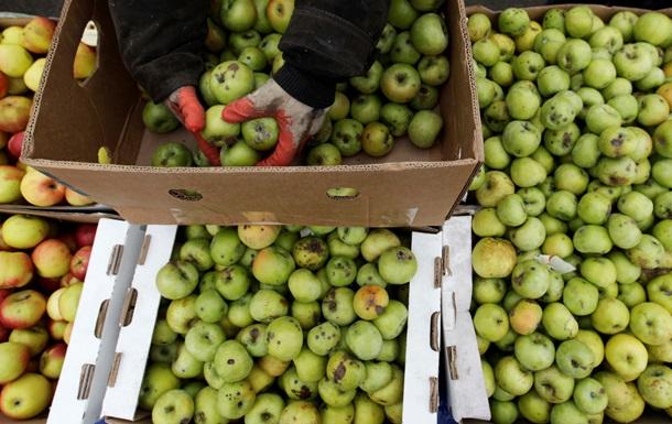 Еврокомиссия: Контрсанкции РФ помогли Европе увеличить экспорт продукции
