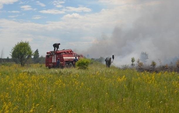 В ГСЧС отчитались о тушении пожара под Чернобылем