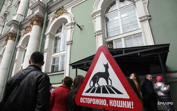 В Госдуме РФ предлагают ограничить количество кошек в квартирах