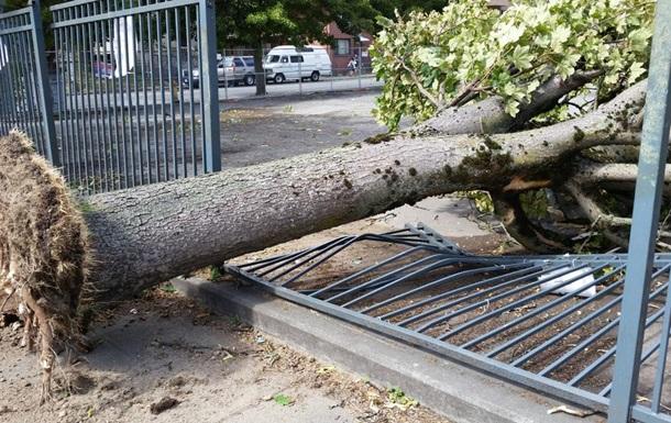 В американском городе Сиэтл из-за ураганов 375 тысяч людей сидят без света