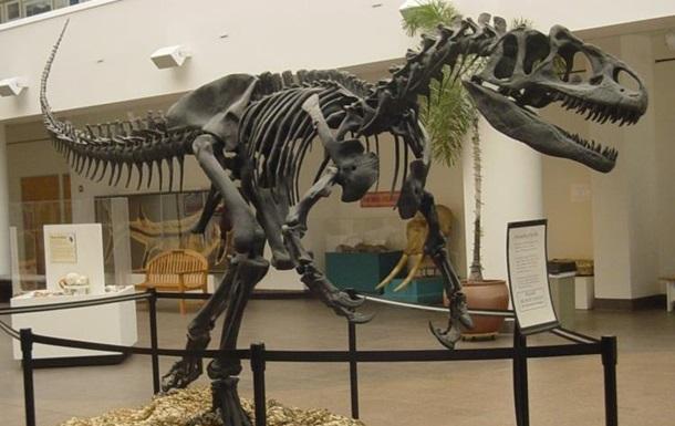 В Британии на торги выставлен скелет динозавра