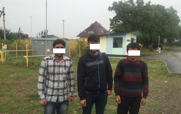 В ходе операции  Граница-2015  задержана почти тысяча мигрантов