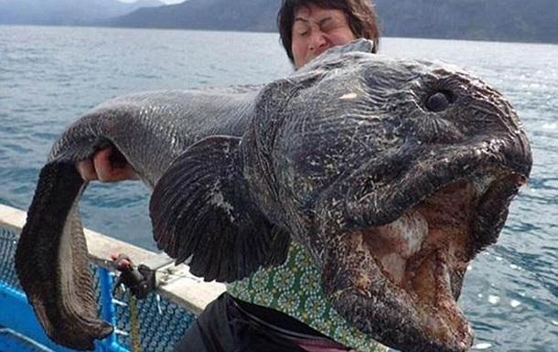 Японец поймал близ берегов Фукусимы  рыбу-чудовище