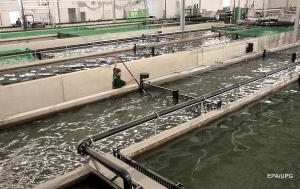 Россия запретила импорт рыбных продуктов из Польши