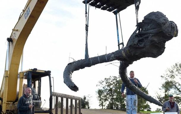 У США фермер у полі знайшов останки рідкісного мамонта