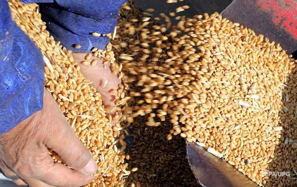Россия отправила в Сирию 100 тысяч тонн пшеницы