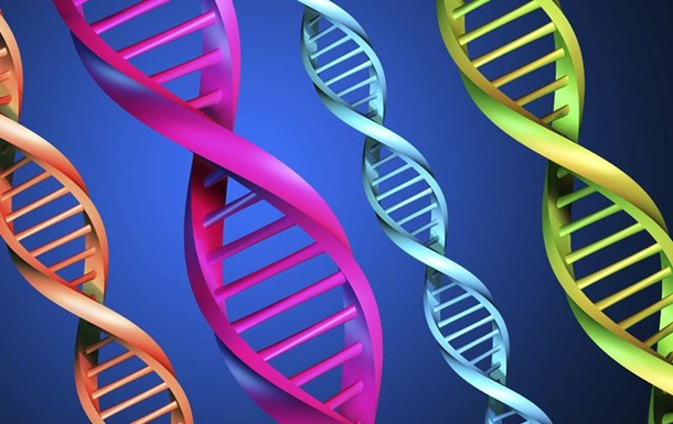 Ученые нашли ген буйного поведения пьяных людей