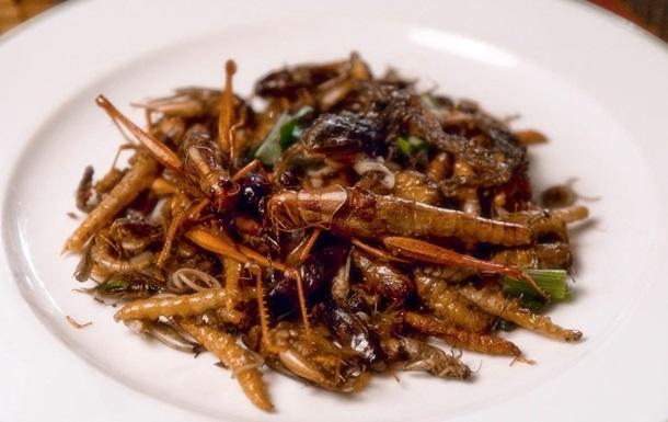 Питательная саранча поможет борьбе с потеплением