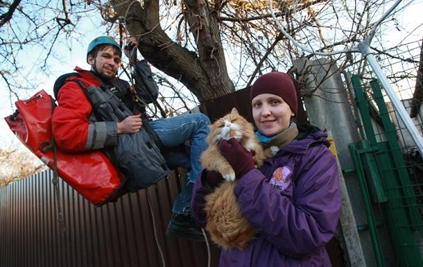 Мурзику на помощь. В Киеве энтузиасты создали команду по спасению животных