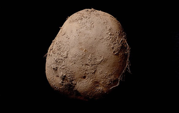 Снимок картошки продали за миллион долларов