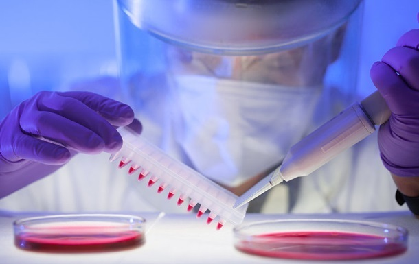 Лихорадка Зика: вакцина будет готова до конца года