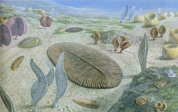 Вчені назвали причину першого вимирання на Землі
