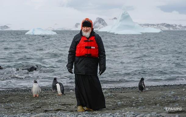 Пингвины напомнили патриарху Кириллу о рае