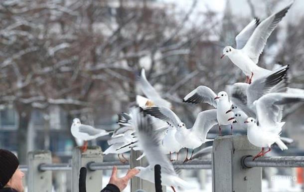 На вихідних українцям обіцяють потепління