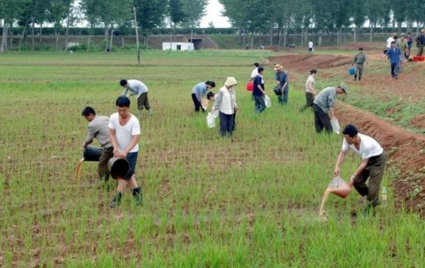 Північна Корея готується до голоду