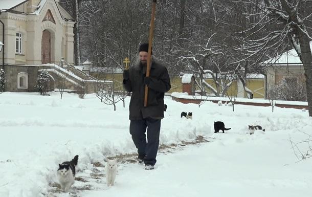 Коти вийшли на хресну ходу навколо російського монастиря