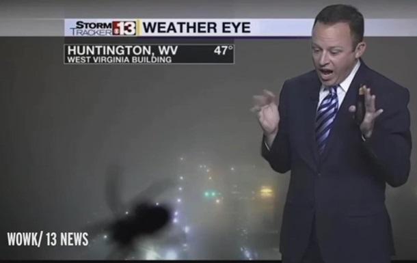 Телеведущий испугался паука в прямом эфире