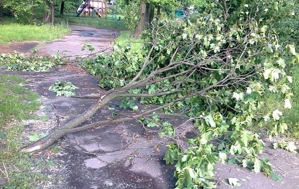 Негода у Києві: повалені дерева перекрили рух